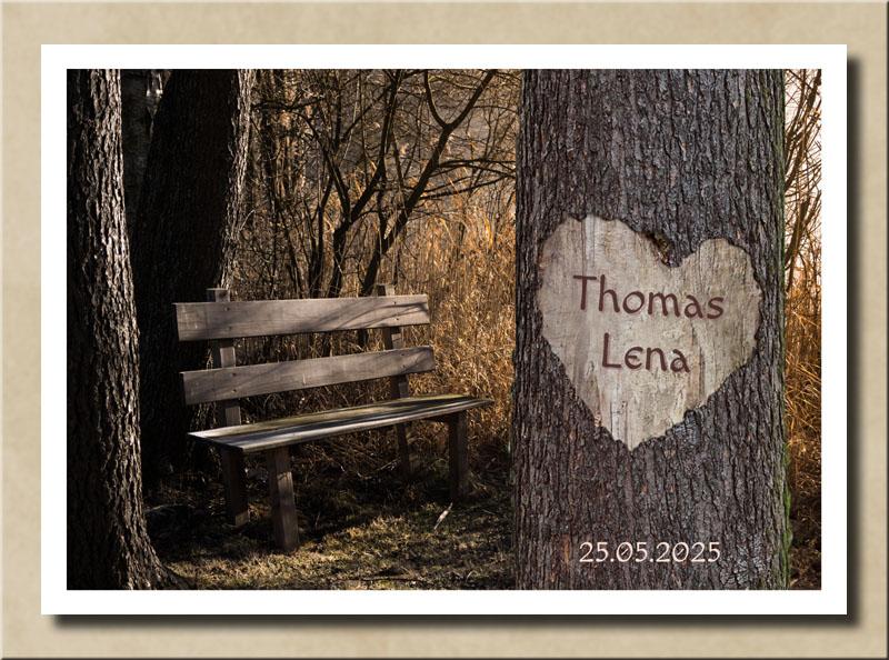 Herz auf Baum mit Sitztbank im Wald