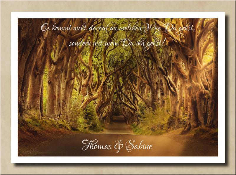 Allee der Urwaldbäume